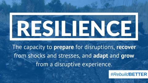 November 2017: Resilience
