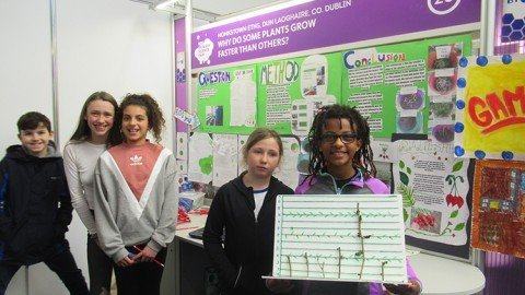 6th Class Debut at Young Scientist of the Year