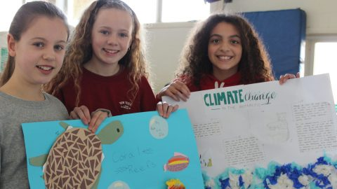 Green Team hosts Environmental Fair