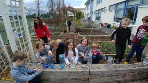 Measuring rainfall in 4B
