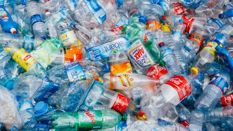 Single Use Plastic Bottle Ban