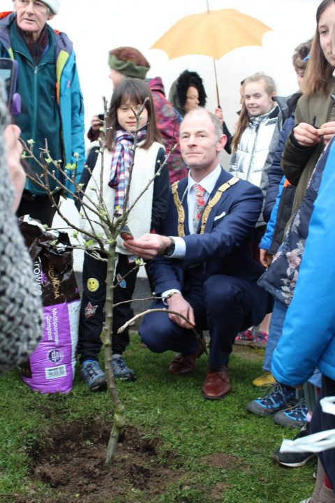 An Taisce Joins Us in METNS to plant a tree for National Tree Day, March 8th